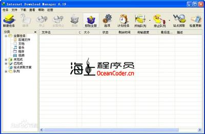 好用的资源下载工具【Internet Download Manager】,IDM破解版